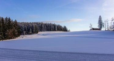 Langlauf und Biathlon Strecken