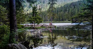 Der Arbersee im Bayerischen Wald ist ein wunderbares Ziel für Herbstwanderungen. - © Fritz Wenzl